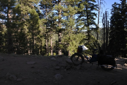 The highest point of my ride, around 8,800 feet.